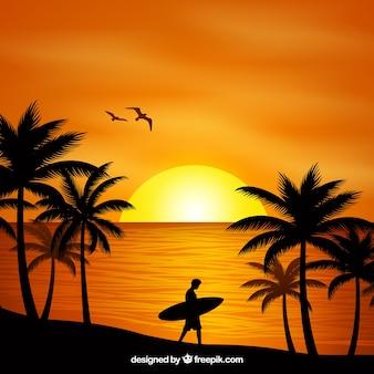 Fundo plano do sol com palmeiras