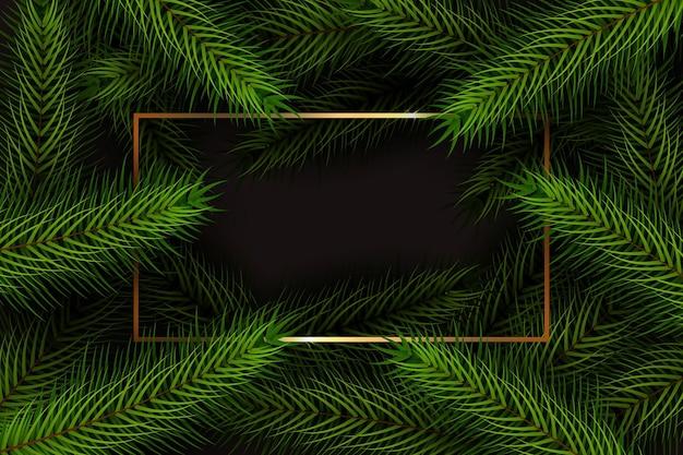 Fundo realista de galhos de árvores de natal
