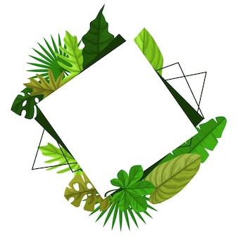 Fundo retangular da moldura da folha de verão da planta tropical verde