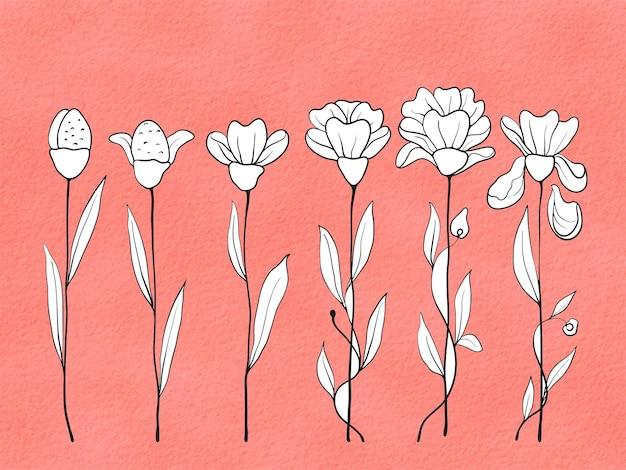 Fundo rosa aquarela desenhado à mão com linha de flor