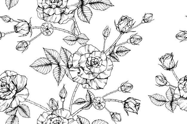 Fundo sem emenda do teste padrão de flor da rosa.
