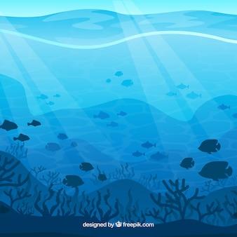 Fundo subaquático com diferentes espécies marinhas
