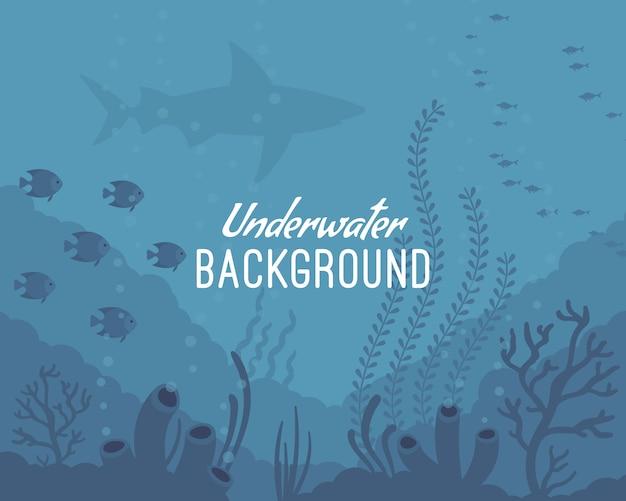 Fundo subaquático