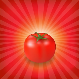 Fundo sunburst com tomate vermelho, ilustração