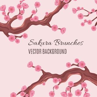 Fundo tradicional japonês de primavera com brunches de árvore de cerejeira sakura flor