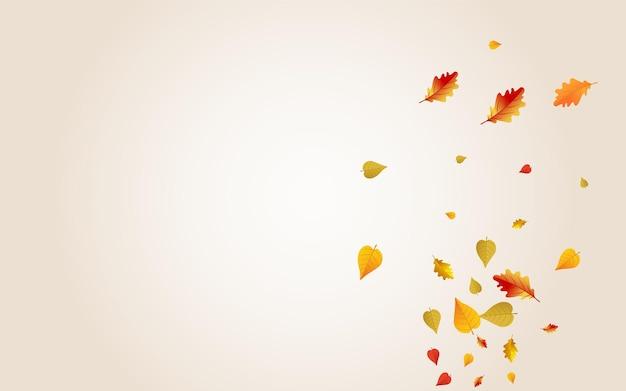 Fundo transparente do vetor floral amarelo. modelo de folhas de papel. design de folhagem de novembro dourado. textura de setembro.