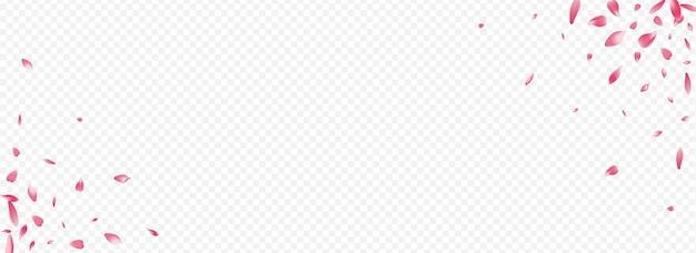 Fundo transparente panorâmico do vetor da flor vermelha. banner de casamento rosa. capa de mãe floral. modelo realista de pétalas. cartão de março de cor sakura.