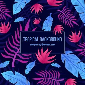 Fundo tropical colorido com design plano