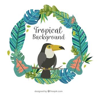 Fundo tropical colorido com tucan