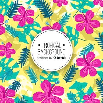 Fundo tropical colorido