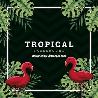 Fundo tropical com flamingos