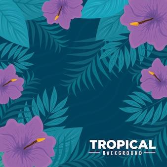 Fundo tropical com flores cor roxa e plantas tropicais, decoração com flores e folhas tropicais