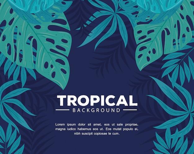 Fundo tropical com galhos e folhas de plantas