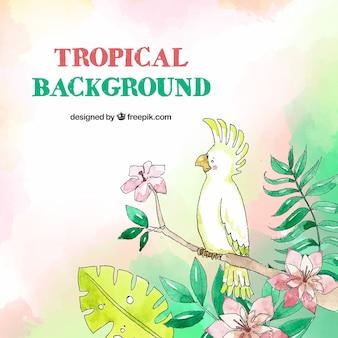 Fundo tropical com pássaros e folhas em estilo aquarela