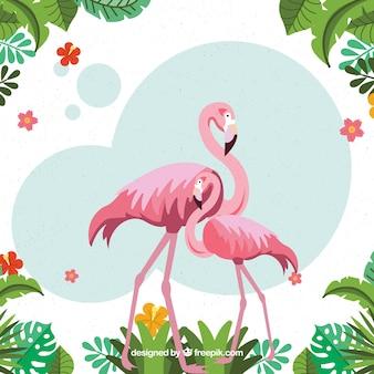Fundo tropical com pássaros e plantas