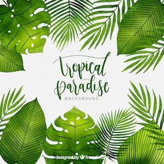 Fundo tropical com plantas em aquarela