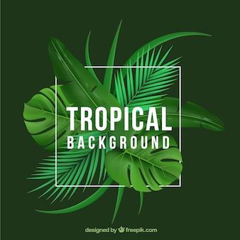 Fundo tropical com plantas realistas