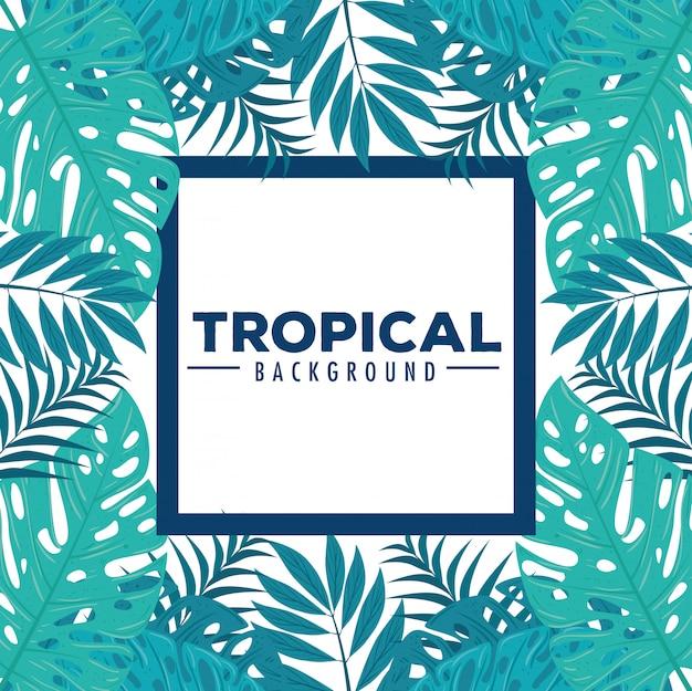 Fundo tropical e quadro de galhos com plantas da selva, decoração com folhas tropicais