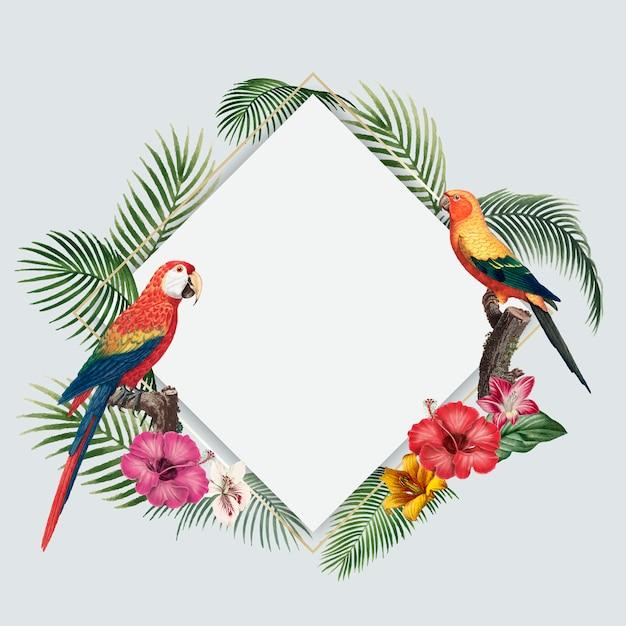 Fundo tropical em branco