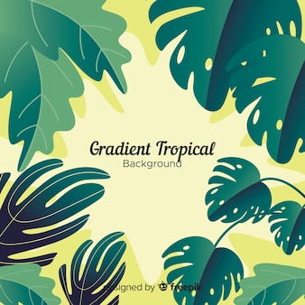 Fundo tropical gradiente