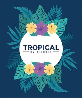 Fundo tropical, quadro de flores cor roxa e amarela com folhas tropicais, decoração com flores e folhas tropicais