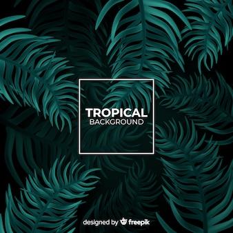 Fundo tropical realista