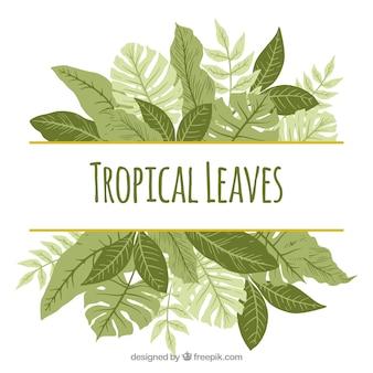 Fundo tropical vintage com design plano