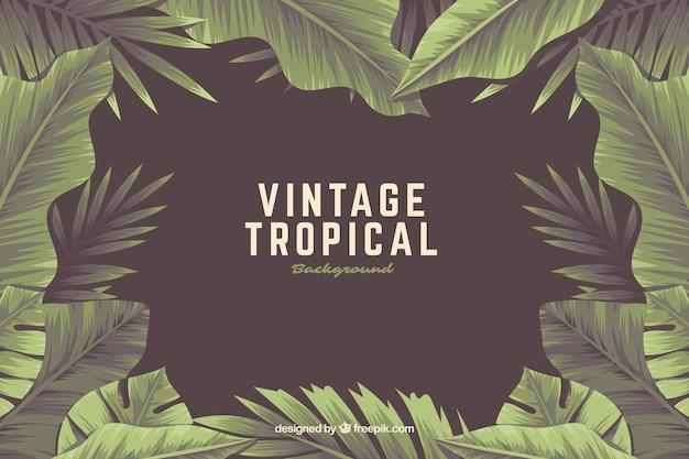 Fundo tropical vintage