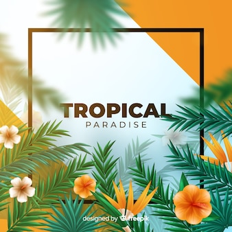 Fundo tropical