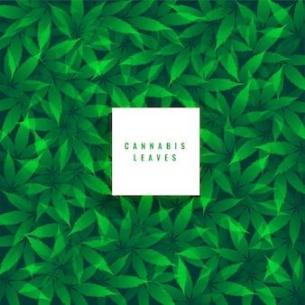 Fundo verde com folhas de maconha