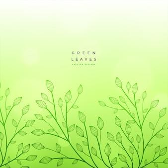 Fundo verde floral belo design