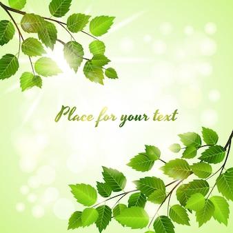 Fundo verde fresco com folhas de primavera em dois cantos opostos sobre um boheh de luz do sol cintilante com copyspace