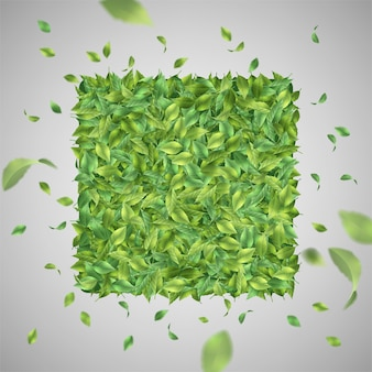 Fundo verde natural com folhas voadoras