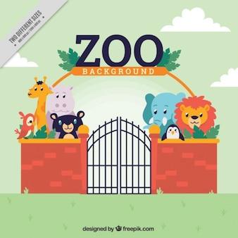 Fundo zoológico com animais selvagens