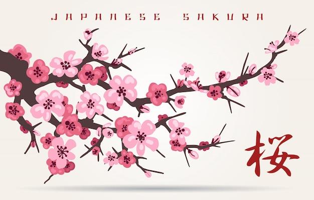 Galho de árvore de flor de cerejeira do japão