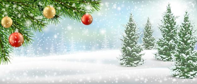 Galho de árvore de natal na paisagem de inverno