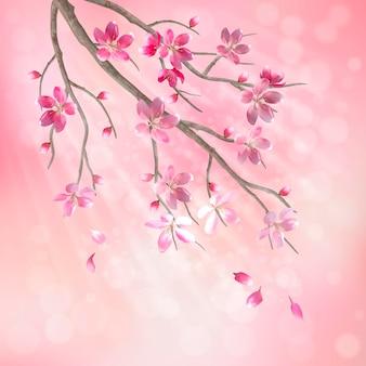 Galho de árvore em flor de cerejeira com lindas flores cor de rosa