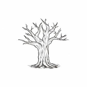 Galho de árvore vintage desenhada de mão