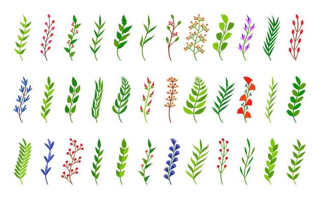 Galhos curvos de árvores verdes com elementos florais desenhados à mão