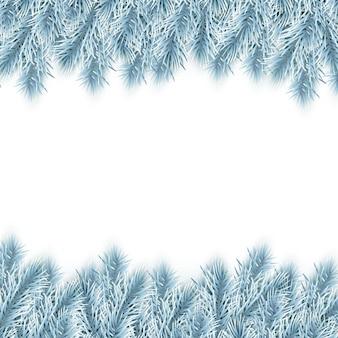Galhos de árvore de abeto de natal azul isolados no branco
