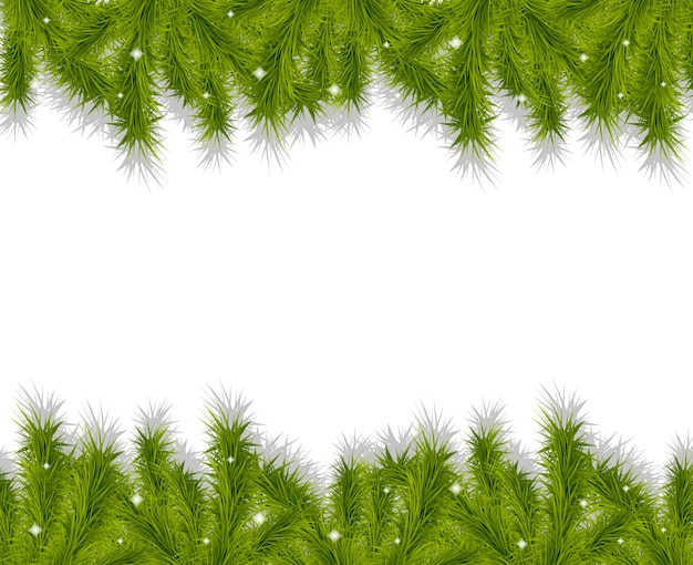 Galhos de árvore de natal faz fronteira com fundo decorativo.