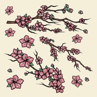 Galhos de árvore de sakura com flores em estilo isolado