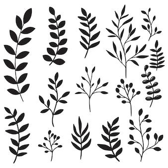 Galhos de árvores de mão desenhada e conjunto de folhas