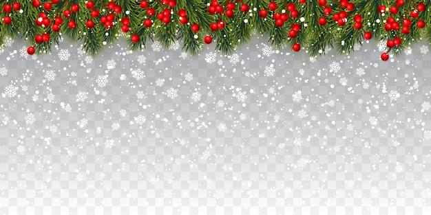 Galhos de árvores de natal com bagas de azevinho e neve de natal