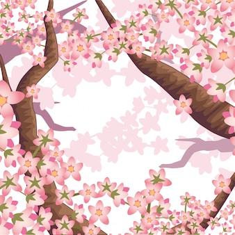 Galhos de cerejeira