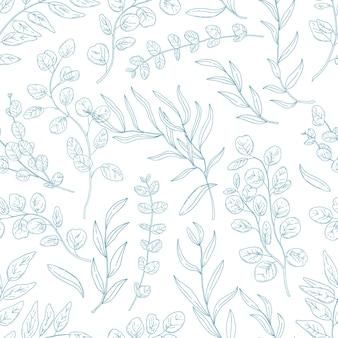 Galhos de eucalipto desenhado à mão padrão sem emenda.
