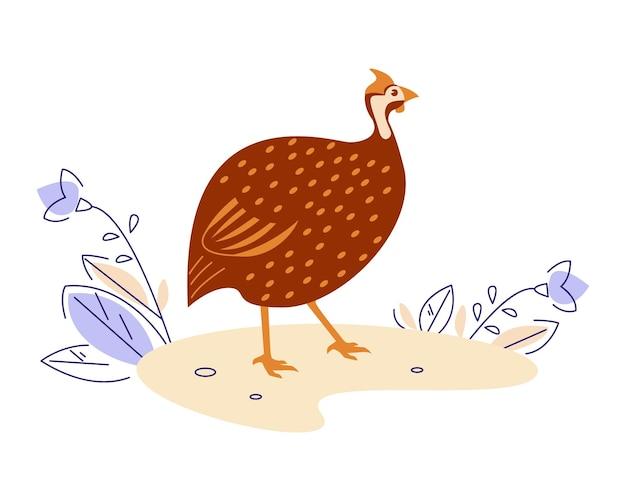 Galinha d'angola na natureza. ilustração vetorial no estilo cartoon plana.