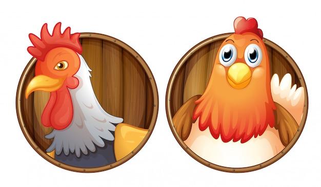 Galo e galinha no distintivo de madeira