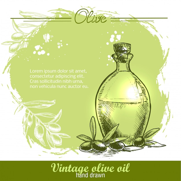 Garrafa de azeite vintage com ramo de oliveira.