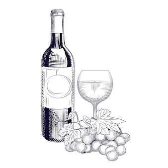 Garrafa de vinho de mão desenhada, vidro e uvas. estilo de gravura.